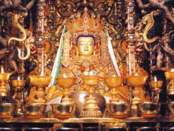 Trulshik-Rinpoche-24